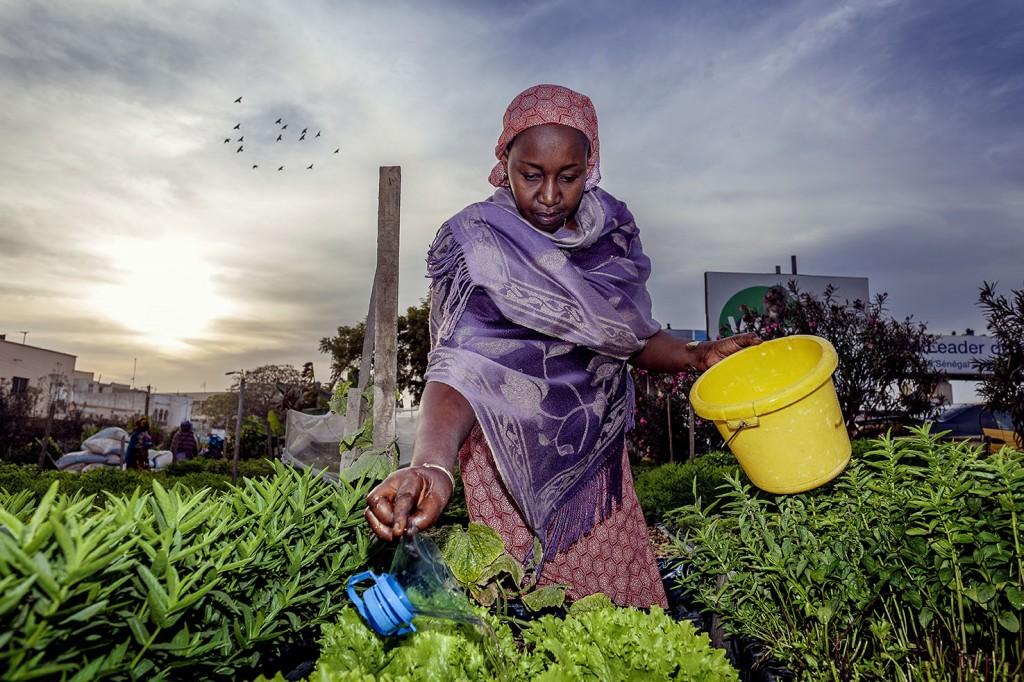 La Cei investe 9 milioni in progetti di sviluppo in Africa