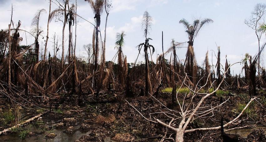 Eni trascinata a processo a Milano per disastro ambientale in Nigeria
